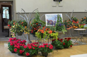 Waverly Community House's second annual Greenhouse and Kitchen Show set for Saturday, April 29