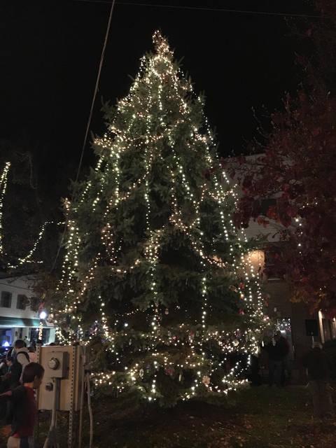 ABPA's Annual Community Tree Lighting Ceremony set for Saturday, Nov. 18