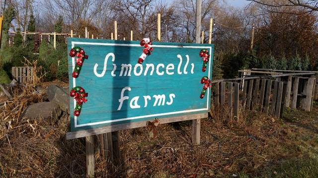 A busy road is a plus for most businesses, and Simoncelli Farms, on the eastern shoulder of U.S. routes 6 and 11 in South Abington Twp., is no exception. The owner of the farm has been selling Christmas trees here since 1987.