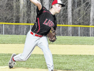 Nathan Rolka's no-hitter leads unbeaten Lackawanna Trail Lions