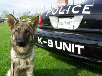 Police officer pitches idea of K-9 unit for Abington Area