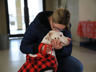 Griffin Pond Animal Shelter holds pet photos with Mr. and Mrs. Claus
