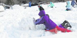 A local girl scout group used a recent snowstorm to build a snowman scene for residents to view from inside Abington Manor. About 15 snowmen were built by Troop 50075.                                  Marcella Kester | For Abington Journal