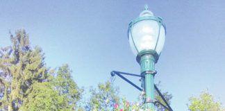 Hanging flower baskets of supertunias are seen on the poles near Platt Park.                                  Ben Freda   For Abington Journal
